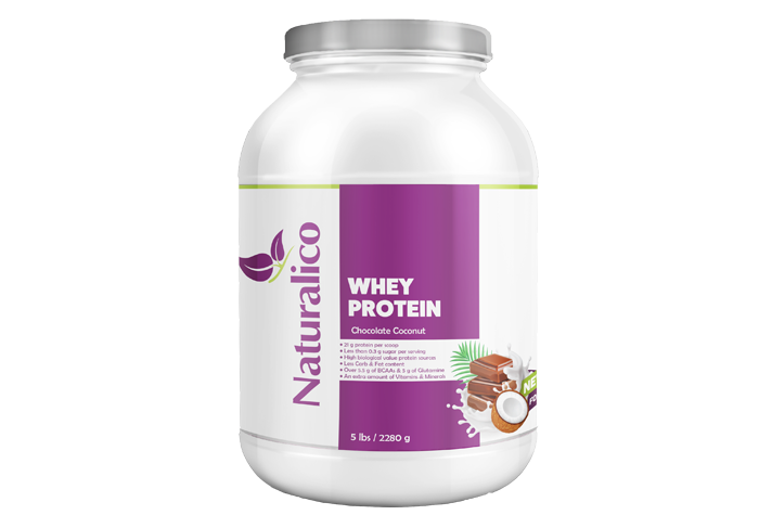 WHEY PROTEIN CHOCOLATE COCONUT